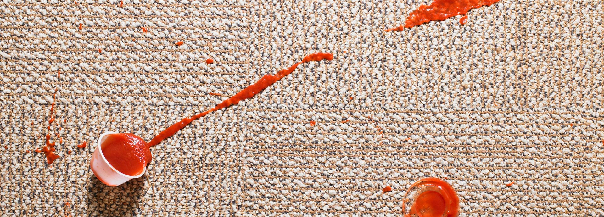 Carpet Cleaning In Houston Texas 4